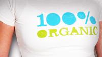 100% Organic Search